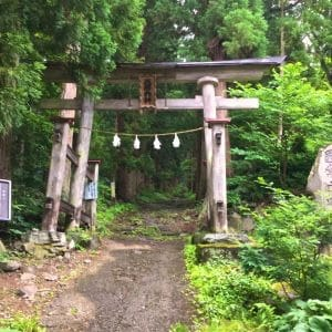 Walk up to Kosuge Main Shrine