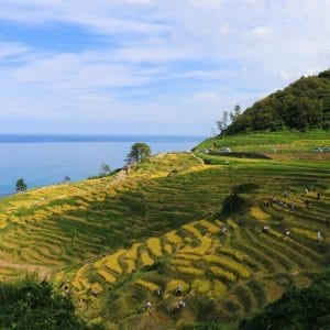 Shiroyone Senmaida – The One Thousand Rice Fields in Noto, Ishikawa, Japan