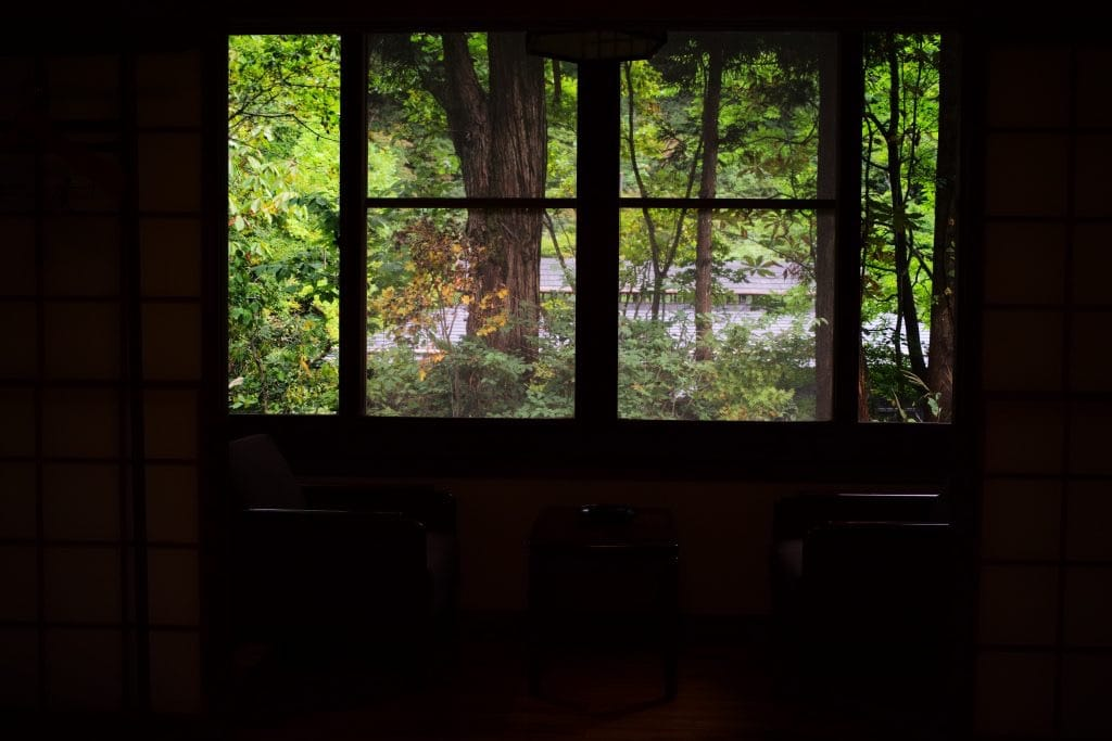 View from the standard Japanese room