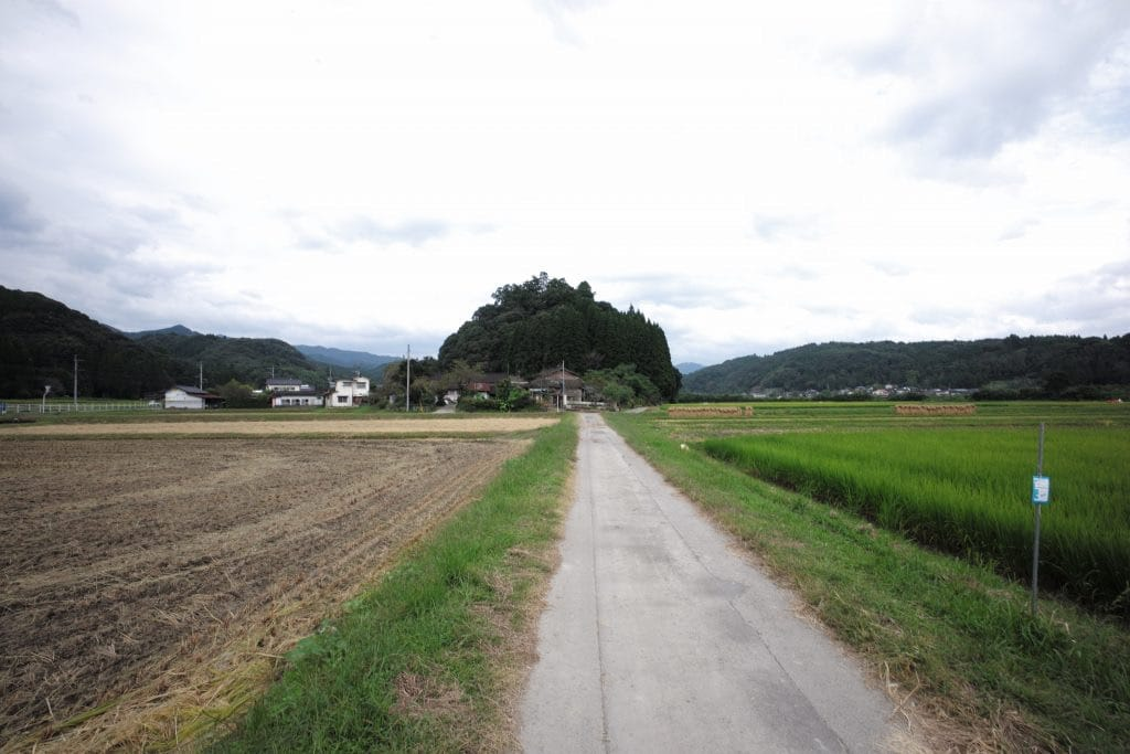 Road to Amemiya shrine is in the rice paddy