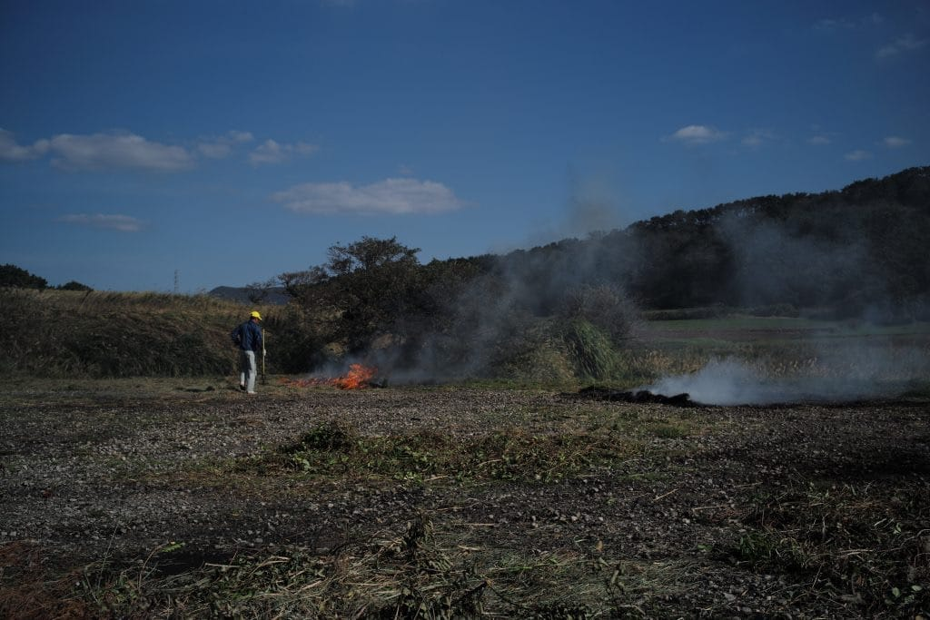 Field burning out