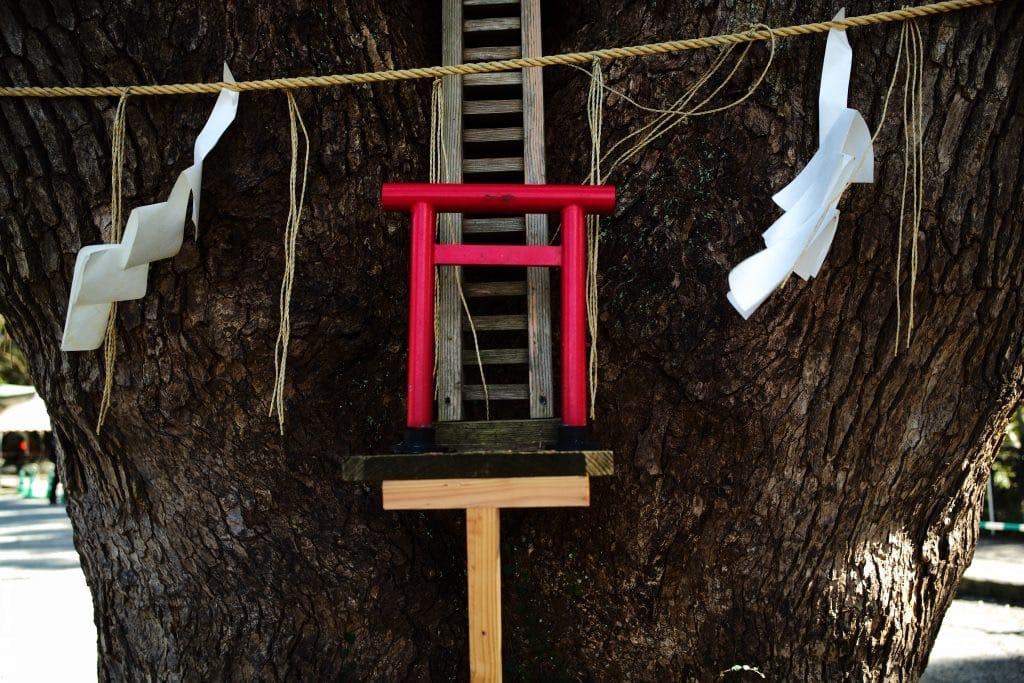 Small Torii Gate to Small Shrine